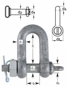 Verzinkte Schäkel Form C mit überstehendem Bolzen